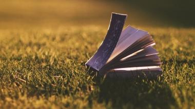 New Earth book on grass, windblown